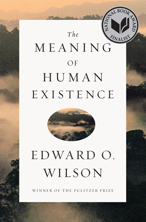 Essay: Hva er meningen med menneskenaturen?